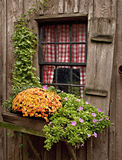 окно коттеджа Стоковое Изображение