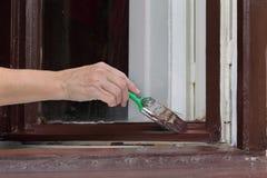 Окно краски женского работника деревянное для того чтобы коричневеть цвет, старую реновацию окна дома, крупный план руки с инстру стоковые изображения