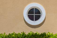 Окно круга белое на стене текстуры Малые листья тени и зеленого цвета Стоковая Фотография RF