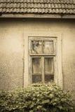 Окно куста поленики сломанное старого покинутого дома в ба Стоковая Фотография