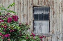Окно на старом коттедже стоковое фото rf