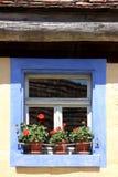 Окно обрамленное синью Стоковое Изображение RF