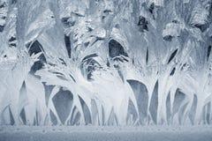 окно орнамента заморозка Стоковая Фотография RF