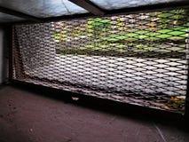 Окно от погреба выглядеть как окно от тюрьмы Стоковое Изображение