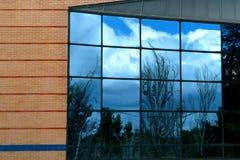 окно природы Стоковое Изображение