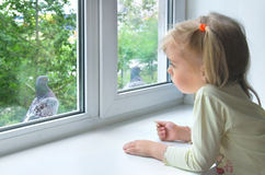 окно ребенка унылое Стоковое Фото