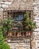 Окно с вазами цветка стоковые изображения rf