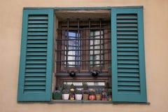 Окно с в горшке заводами Стоковые Изображения RF