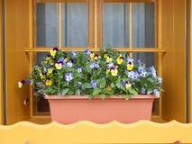 Окно с красочными цветками Стоковое Изображение