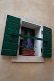 Окно с цветком и штарками стоковые фото