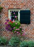 Окно с штарками и цветками на кирпичной стене Стоковые Фотографии RF
