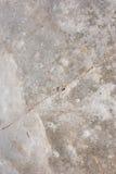 окно текстуры детали предпосылки старое деревянное Стоковая Фотография