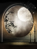 Окно фантазии с лозами Стоковое Изображение RF
