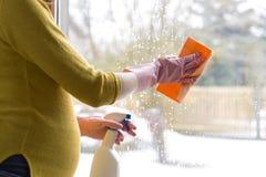 Окно чистки беременной женщины с тканью и окно распыляют Концепция чистки Sping Стоковое Фото