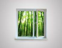 окно Стоковые Фотографии RF