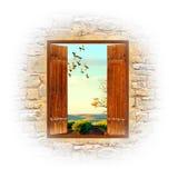 окно Стоковые Фото