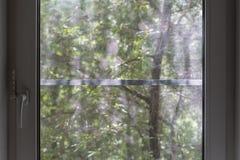 Окно PVC с сеткой от комаров, на запачканной предпосылке дерево w Стоковые Изображения RF