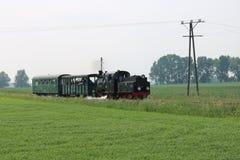 локомотив пара - скалозуб Стоковые Изображения RF