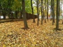 Около загородки на сезоне падения Стоковая Фотография