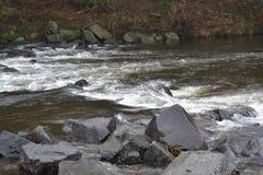 Около скалистого реки Стоковое Изображение