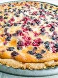 Округленный очень вкусный торт с голубиками и смородинами, сладостной едой Стоковая Фотография RF