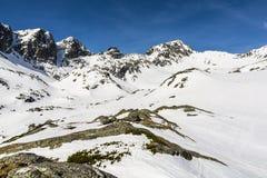 Окружать долину в зиме стоковая фотография