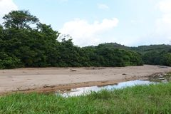 Окружать реку Guayabero Колумбия стоковое фото rf