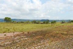 Окружать реку Guayabero стоковое фото
