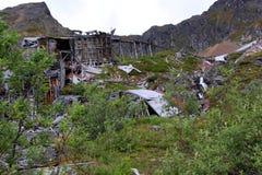 Окружающая среда Аляски принимала свою пошлину стоковое фото rf
