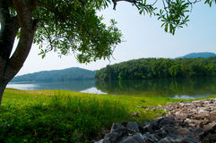 окружающая среда Стоковая Фотография