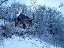 окружающая среда зимы Стоковое фото RF