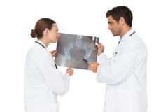 2 доктора анализируя рентгеновский снимок совместно Стоковые Фото
