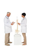 2 доктора обсуждая кроме каркасной модели Стоковая Фотография RF