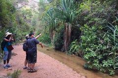Октябрь 2017: isalo, Мадагаскар: Пеший туризм через каньон в национальном парке Isalo, Мадагаскар Стоковые Изображения