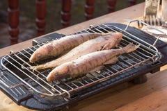 Окунь рыб испеченный дома на гриле Стоковые Изображения