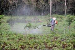 Окуривание урожая Стоковые Изображения RF