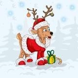 Олени в костюме Санта Клауса Стоковое Фото