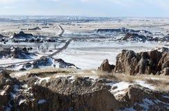 олени неплодородных почв Стоковые Фото