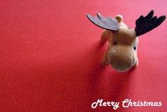олени рождества Стоковая Фотография