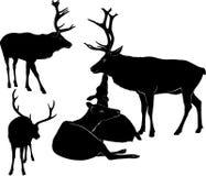 Олени silhouette комплект - иллюстрация вектора бесплатная иллюстрация