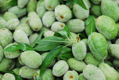 оливка Стоковое Изображение RF