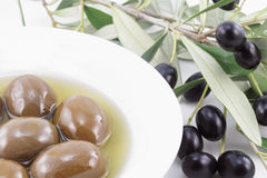оливки стоковая фотография rf