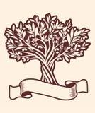 Оливковое дерево и пустое знамя текста Дополнительный виргинский символ оливкового масла Стоковые Изображения RF