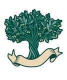 Оливковое дерево и пустое знамя текста Дополнительный виргинский символ оливкового масла Стоковое Изображение