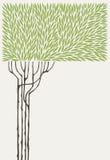 оливковое дерево иллюстрация вектора