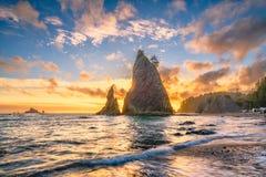Олимпийский национальный парк, Вашингтон, пляж США стоковые изображения rf