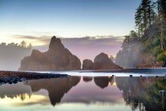 Олимпийский национальный парк, Вашингтон, США стоковые изображения