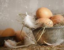 олово коричневых яичек шара старое запятнанное Стоковые Фотографии RF
