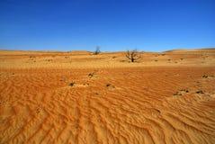 Оман стоковые фотографии rf