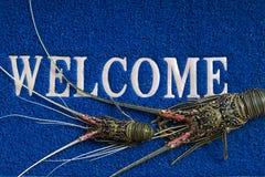 Омары добро пожаловать циновки Стоковая Фотография RF